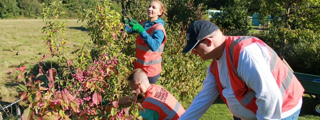 three volunteers gardening
